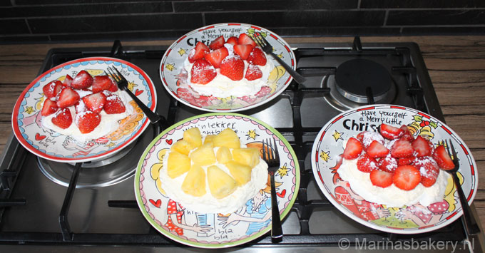 1 persoons pavlova's